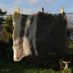 Miriam_Hanid_18.Felt_Drying